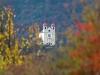 Gleif im Herbst, Helmuth Pliger