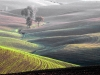 9_val-d-orcia_ambach-hermann