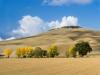 Val D'Orcia - Toskana 4