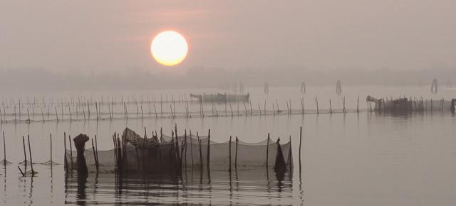 Die Lagune im Nebel
