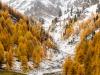 Herbst in Langtaufers 2 toni jaitner