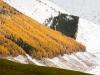 Herbst in Langtaufers 3 toni jaitner
