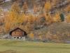 Langtaufers im Herbst - Enie P.