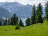 Bergwiesen übern Reschensee
