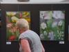 Nora S. - Sommerausstellung 2018
