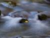 Wasserlauf Lago Smeraldo, Alex P.