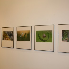 Eröffnung der Fotoausstellung 30 Jahre