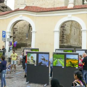 Fotokunst im Quadrat