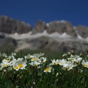 Fahrt in die Dolomitenpässe